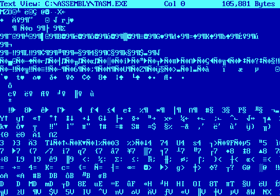כך נראית שפת מחשב